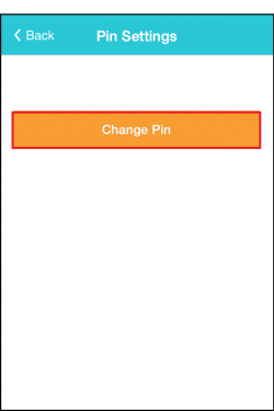 How do I change my pin_3